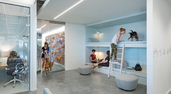 Oficinas creativas de Bark-1