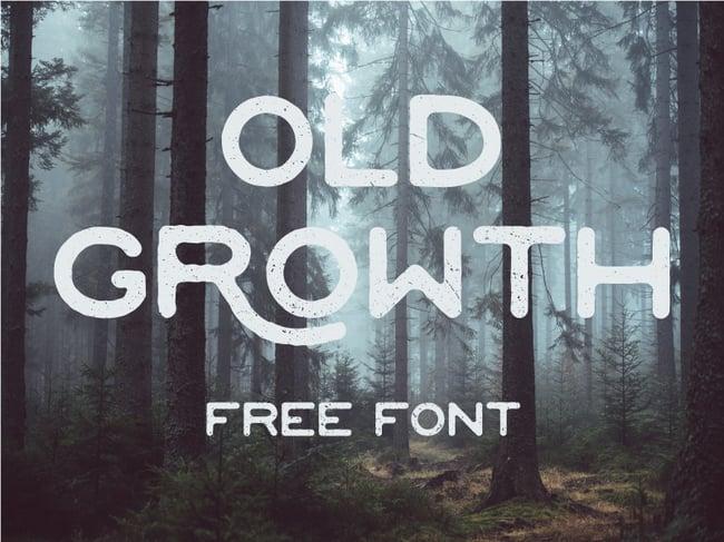 Fuentes para logotipos: Old Growth tipografías para logos