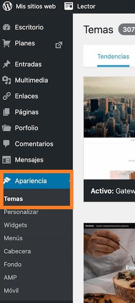Opciones de apariencia y tema en WordPress