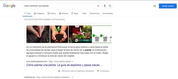 Resultados universales SERP Google