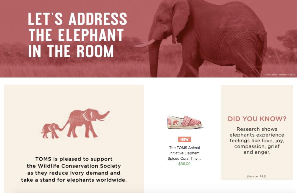 elefante toms.png