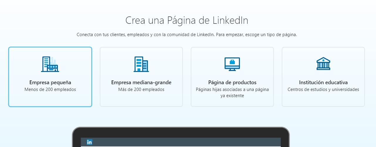 opciones de negocio linkedin