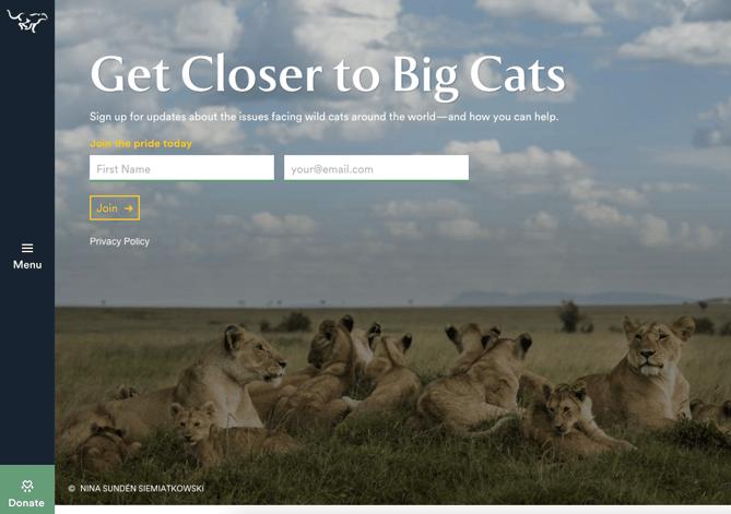 Call to action de Panthera