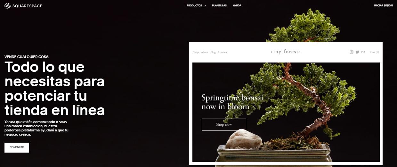 plataformas de comercio electrónico squarespace
