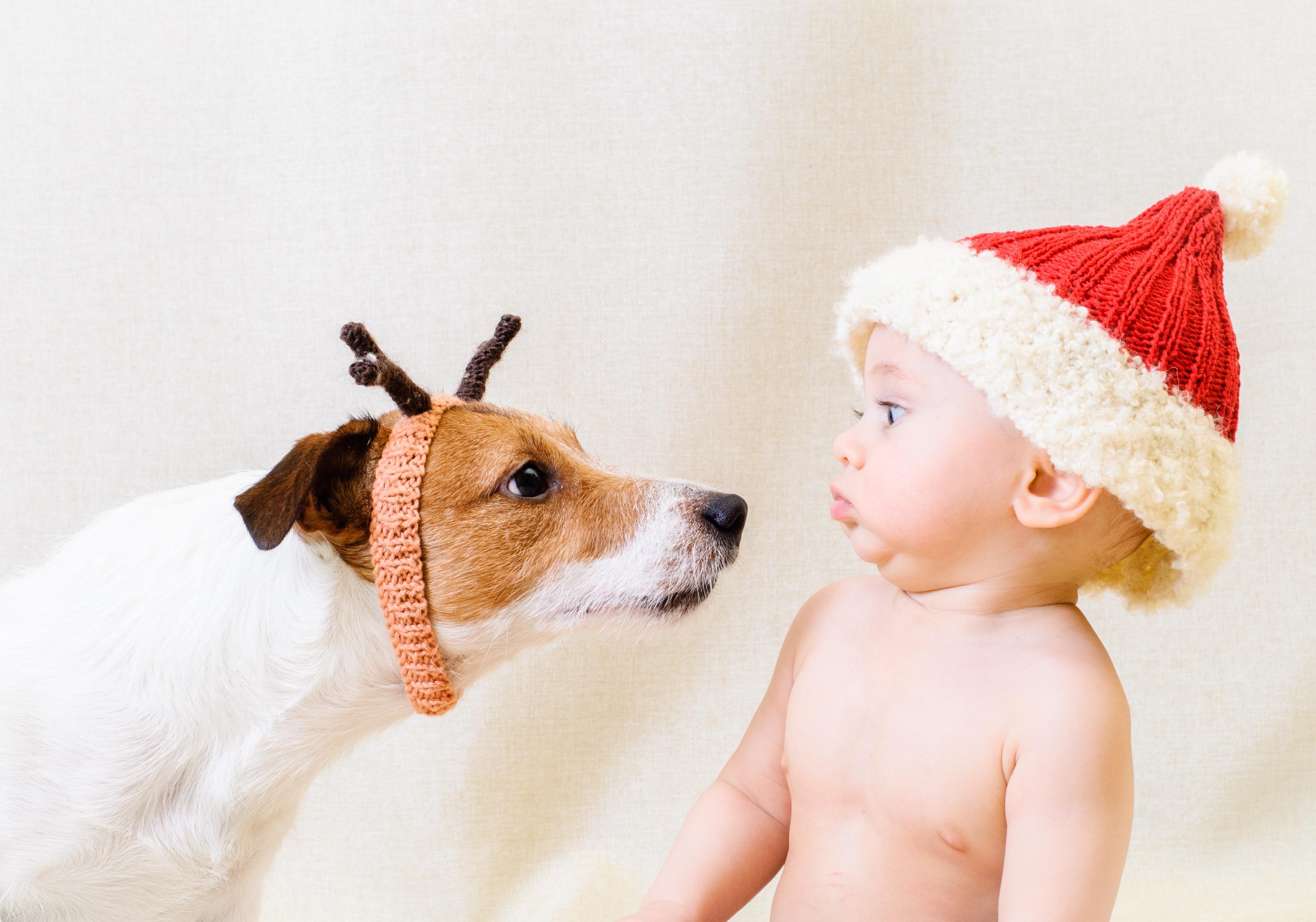[Gratis] Imágenes Navideñas y de otras fiestas para tus campañas en esta temporada