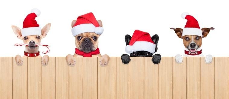 clientes leales campañas navideñas