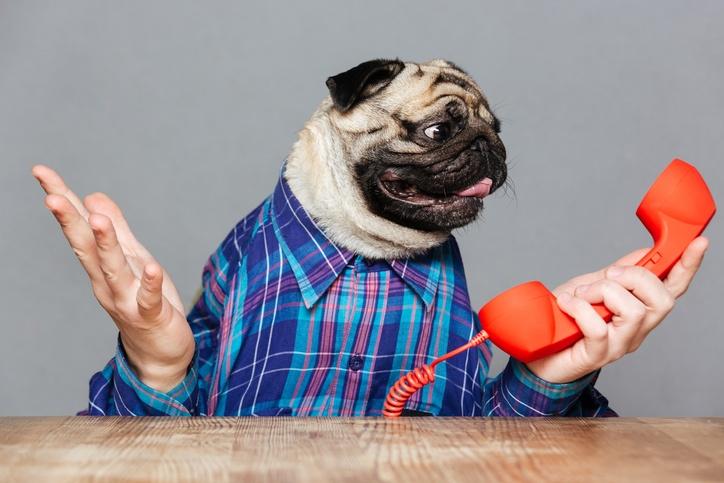 9 Frases de ventas que hacen que tus clientes te cuelguen el teléfono
