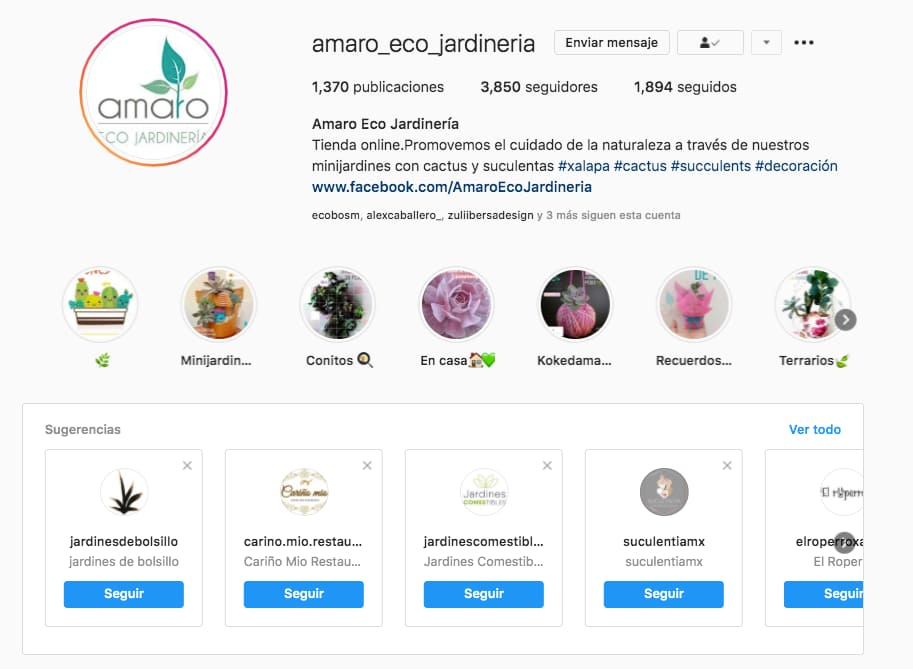 Marketing en Instagram: cuentas relacionadas