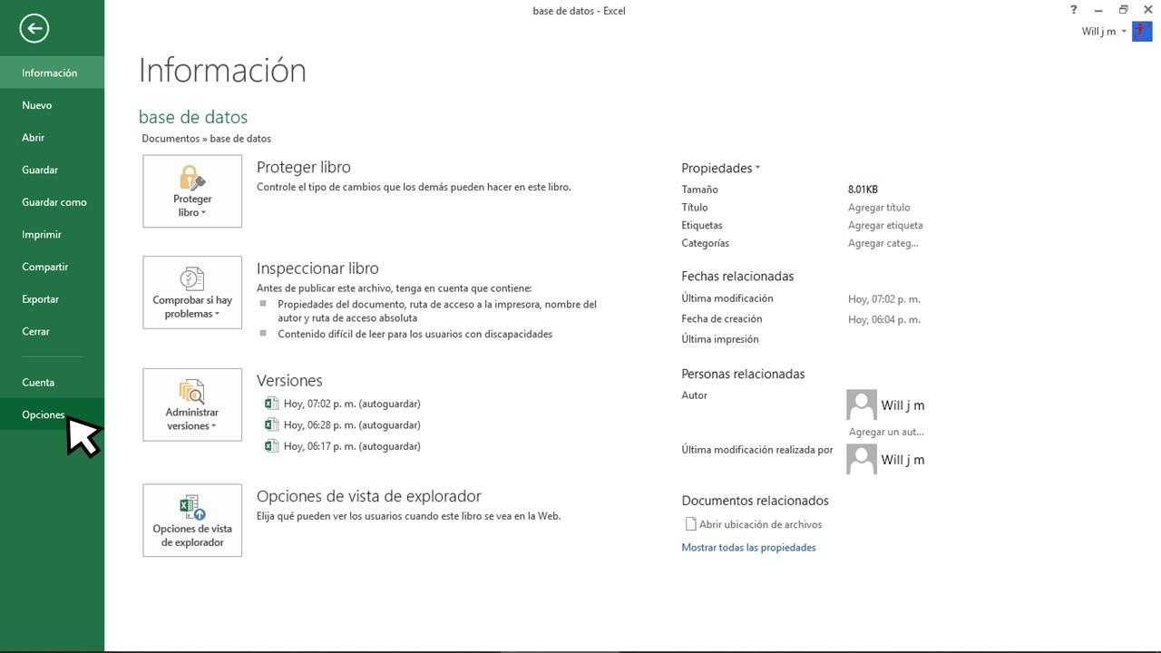 Opciones de archivo en Excel para base de datos