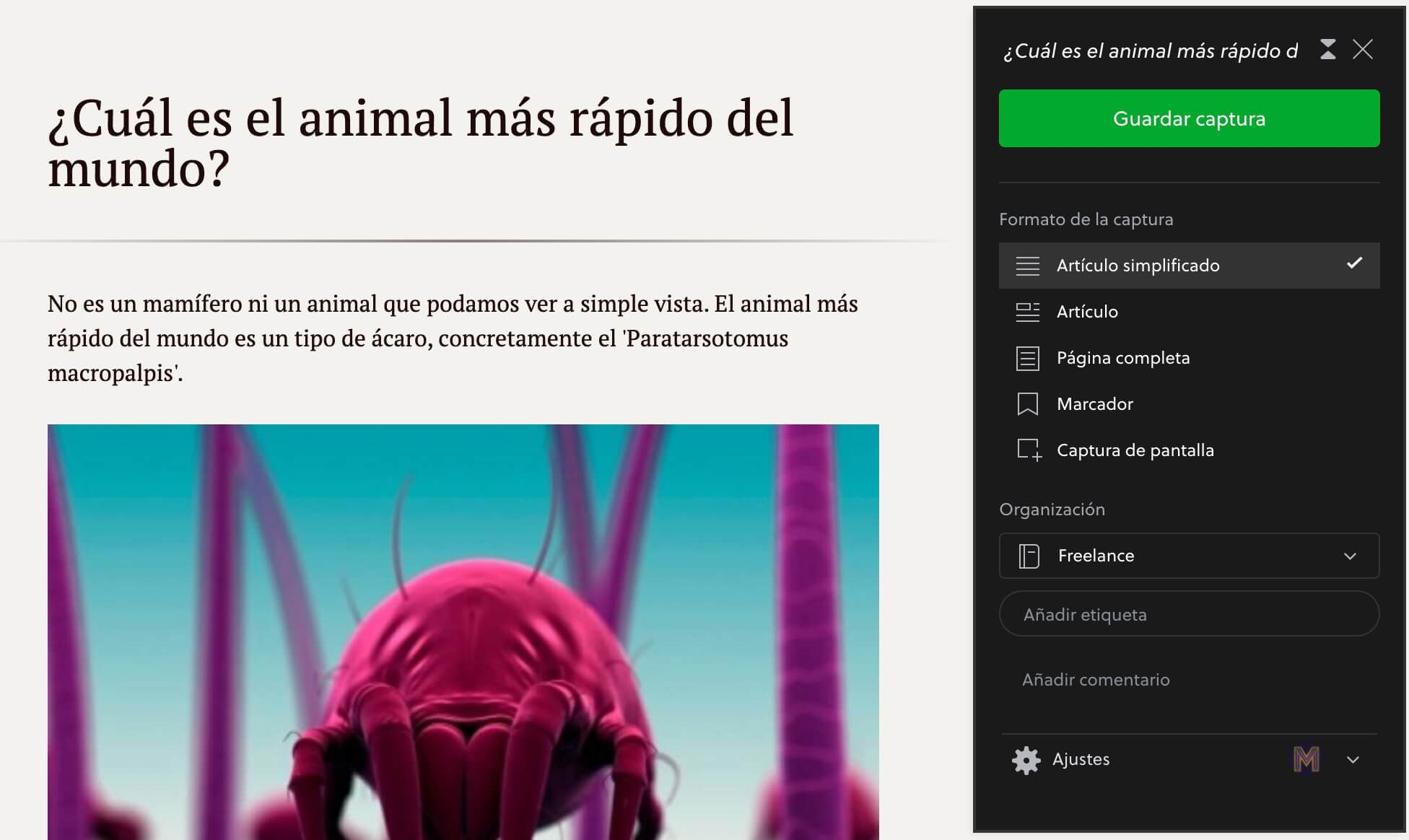 Extensión Evernote Web Clipper para Google Chrome