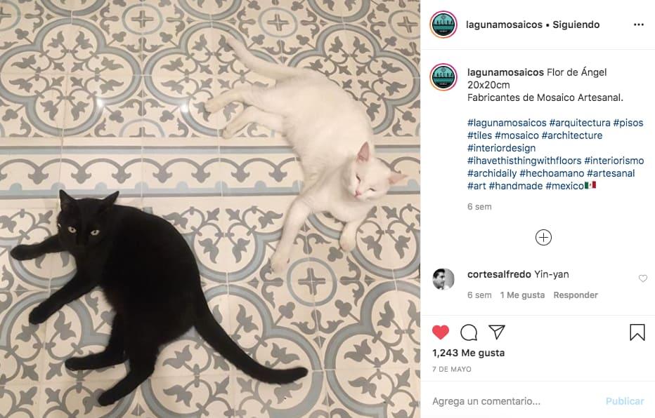 Simetría en fotografía para Instagram de @lagunamosaicos