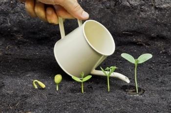 5 formas de crecer una agencia de marketing pequeña