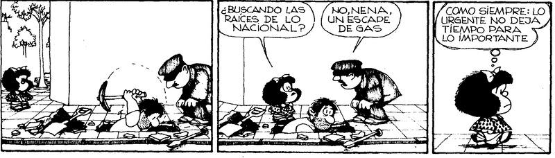 Hacer diferencia entre lo urgente y lo importante en la gestión empresarial, según Mafald
