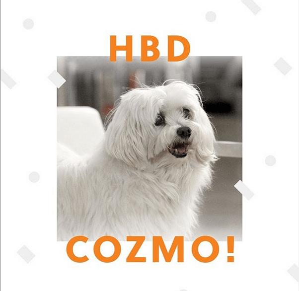 Publicación de la agencia creatica hzgd: cumpleaños de Cozmo