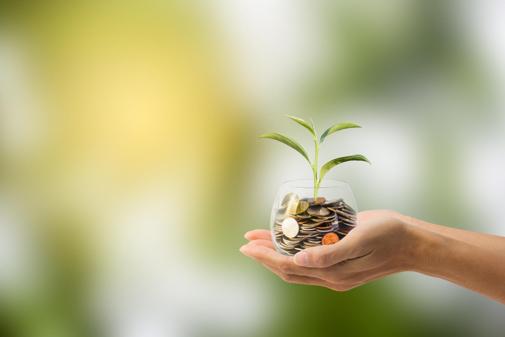 Cómo calcular el valor de la vida del cliente (LTV)