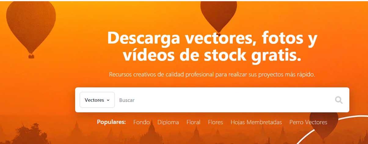 Ejemplo de mejores herramientas para diseño web en 2022: Vecteezy