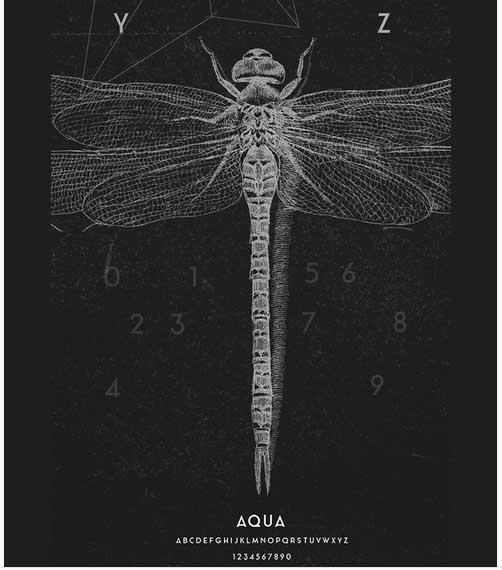 Tipografía creativa gratis para logotipos: Aqua