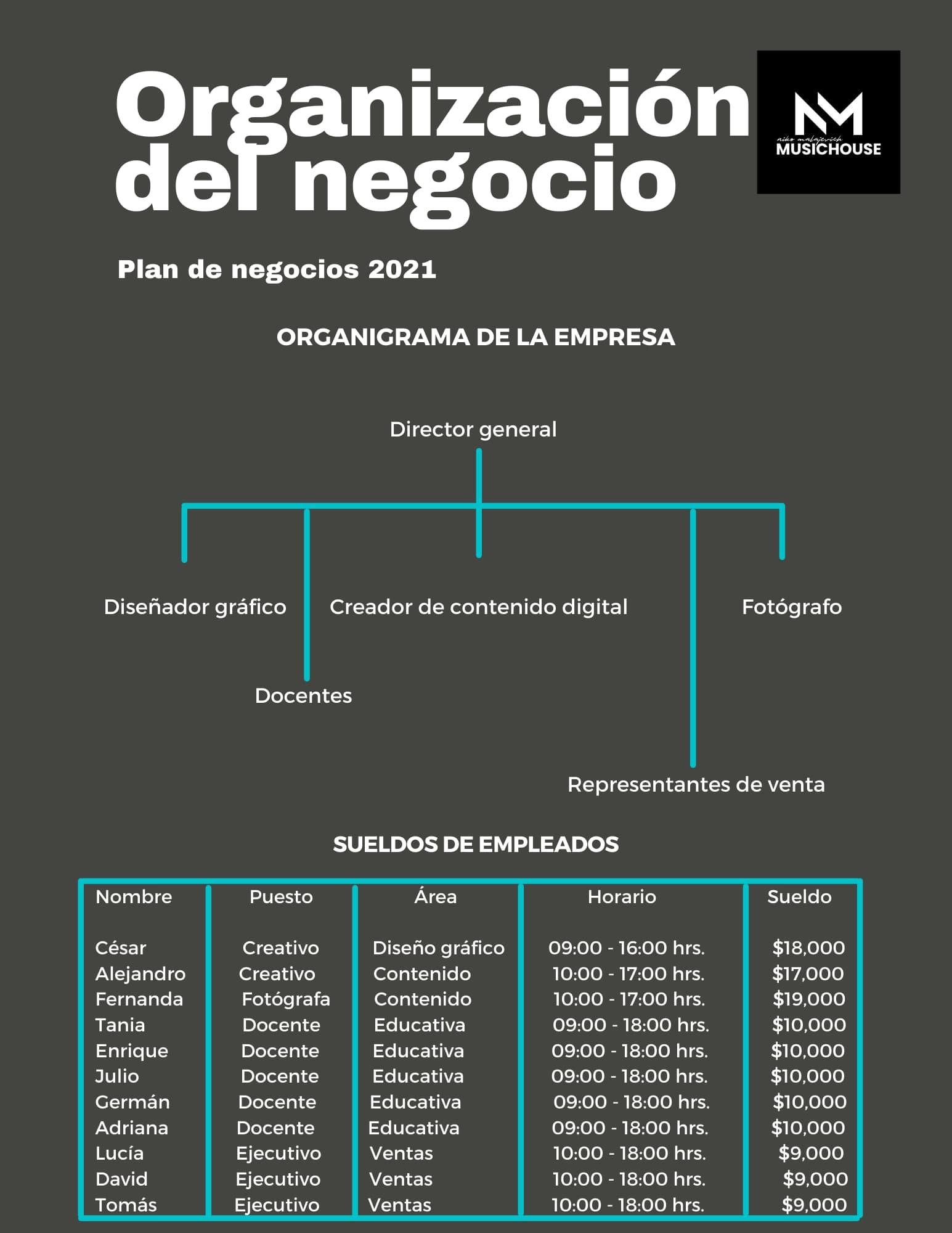 Organización del negocio para el plan de negocios