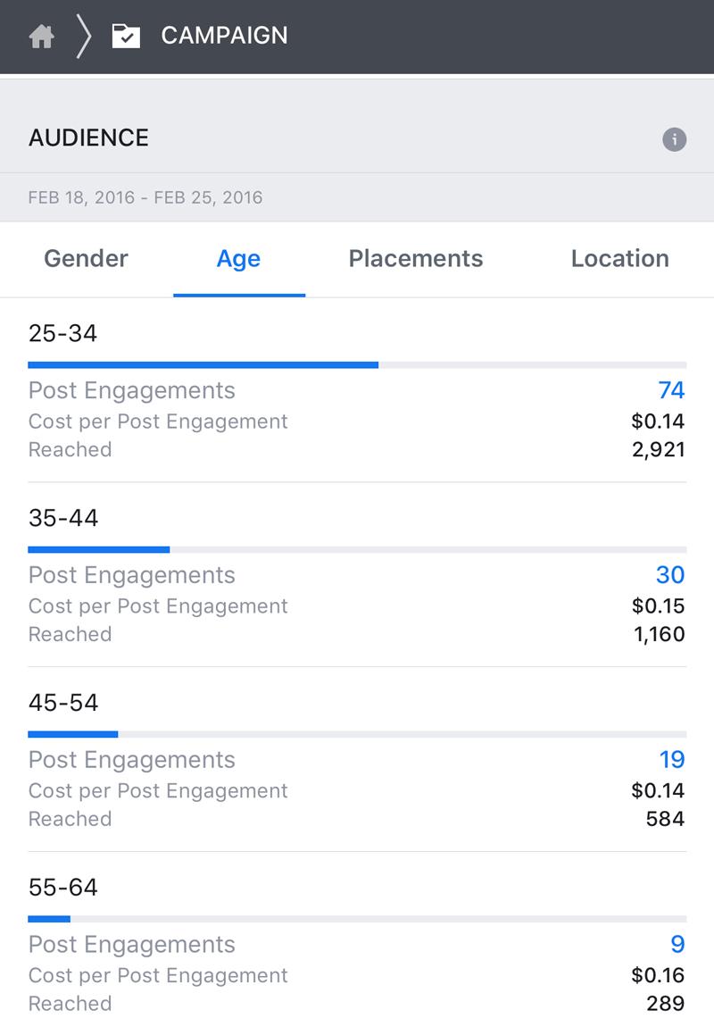 Cómo hacer publicidad en Facebook: datos de campaña