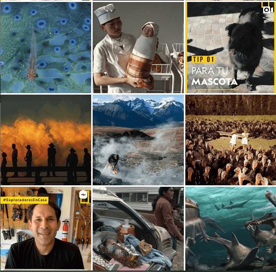 Ejemplo del diseño del feed de National Geographic LATAM  para crecer en Instagram