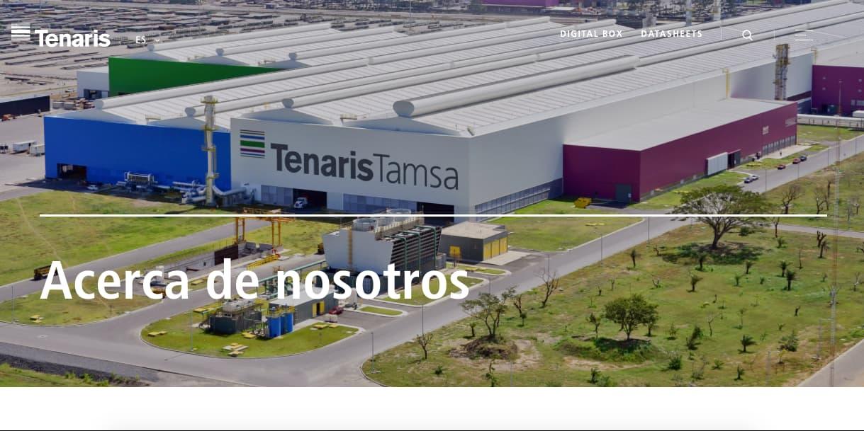 Ejemplos de objetivos generales de una empresa: Tenariss