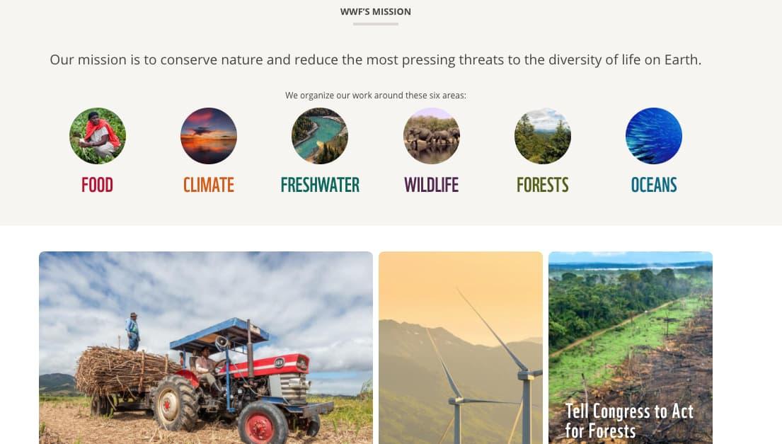 Estrategia de marketing internacional de World Wildlife Foundation