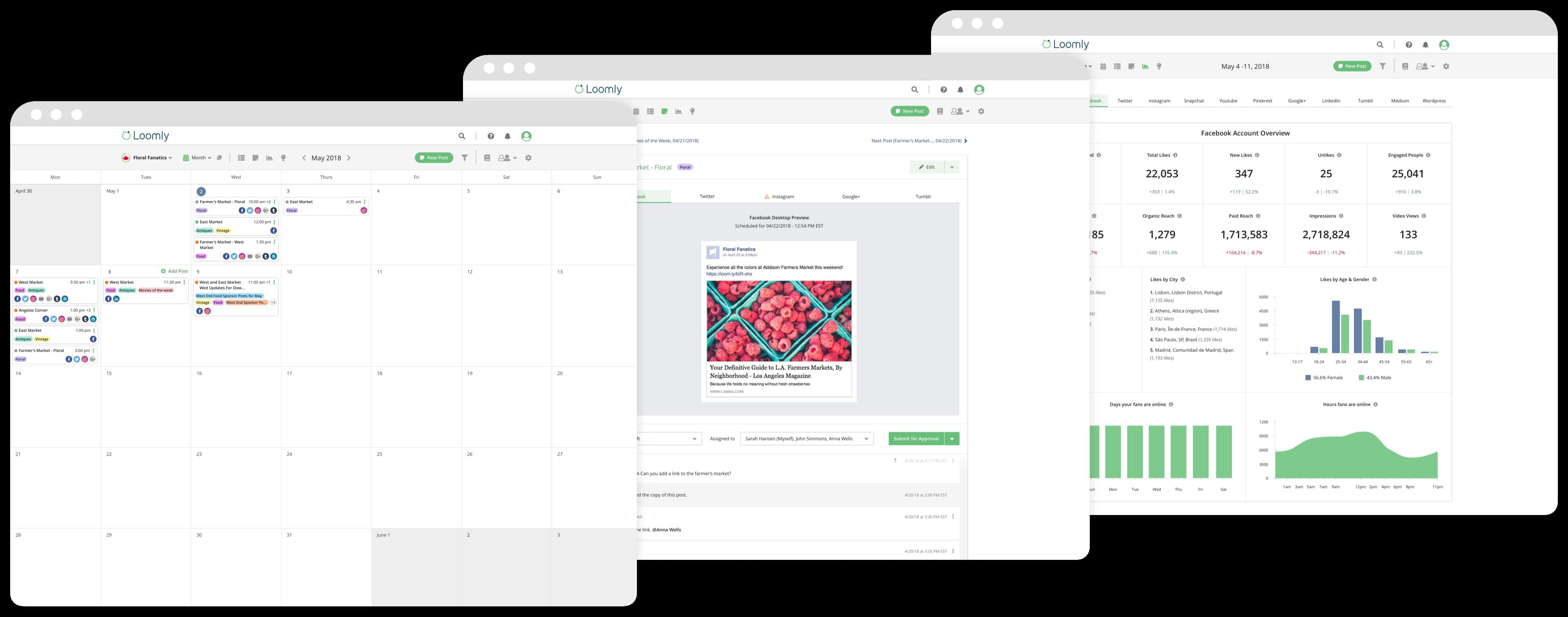 Herramientas para programar publicaciones en Facebook: Loomly