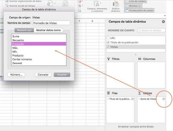 Cómo hacer una tabla dinámica en Excel: configuración de campo